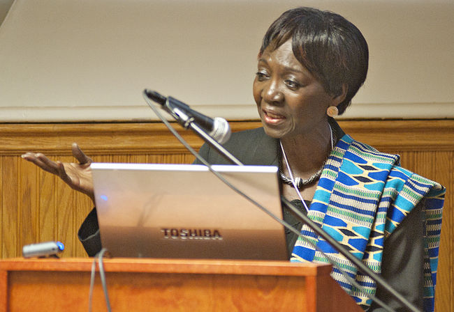 Nana Apt addresses Tshepo Institute meeting